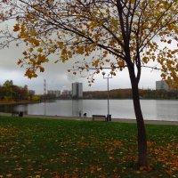 Октябрь в городе :: Андрей Лукьянов