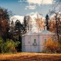 Дворец Петра III :: Александр Святкин