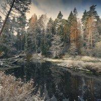 Первый Прошлогодний снег ... :: Roman Lunin
