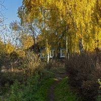 осенний пейзаж :: Владимир Ефимов