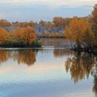 Осенние вечера на Енисее :: Екатерина Торганская