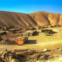 Бедуинское поселение в районе Мёртвого моря :: Игорь Герман
