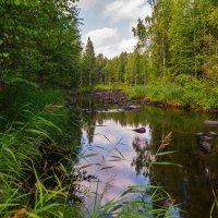 Река Янгера :: Владимир Демчишин