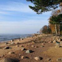 Балтийский берег :: AleksSPb