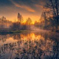 Вешний рассвет ... :: Roman Lunin