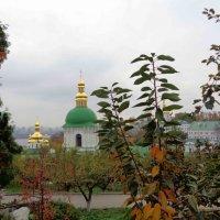 Киев :: Лара Амелина