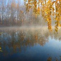 Осенний пруд :: Григорий Капустин