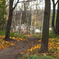 Прогулка по осеннему городу (41) :: Виталий