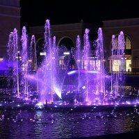 Фиолетовые струи :: Nina Karyuk
