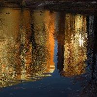 Тороплюсь, пока пруд не замерз :: Андрей Лукьянов