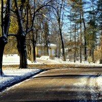 В парке, выпал первый снег  11 :: Сергей
