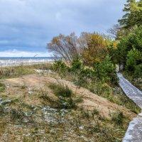 дорожка вдоль берега :: Георгий А