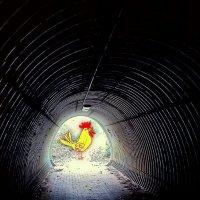 Ку-ка-реку в конце тунеля :: Валерий Розенталь