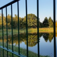 В тюрьме любимая природа :: Валерий Розенталь