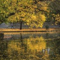 Осень в парке. :: Галина Шепелева
