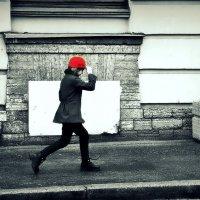 про красную шапочку :: Алексей Астафьев