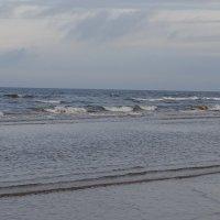 серое небо, серое море :: Sabina