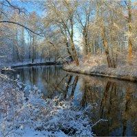 В преддверии зимы... (Черная речка, Невский лесопарк) :: Александр Алексеенко