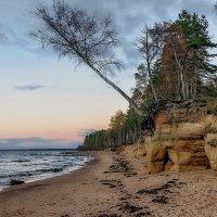 Latvia 2018 Vidzeme seaside :: Arturs Ancans