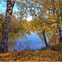 Осень над рекой :: Вячеслав Минаев