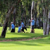 Любители гольфа :: Nina Karyuk