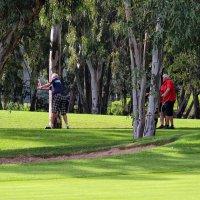 Игроки в гольф :: Nina Karyuk