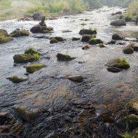А вода, вода по камушкам... :: Анатолий Цыганок