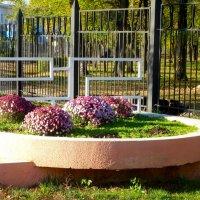 У входа в парк... :: Тамара (st.tamara)