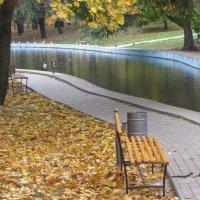 В осеннем городском парке :: Александр Скамо