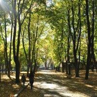 Осенью :: Vit