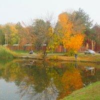 Октябрь в городе... :: Тамара (st.tamara)