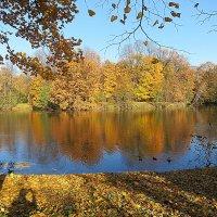Осень-это прекрасная пора. :: Валентина Жукова