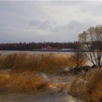 Осень в Петергофе :: Iulia Efremova