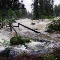 После недели обильных дождей :: Галина Щербакова