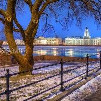 Голубое утро у Кунсткамеры :: Юлия Батурина