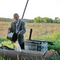 Качает воду в бак для полива :: Светлана Рябова-Шатунова