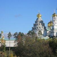 Вид на Воскресенский Ново-Иерусалимский монастырь :: Дмитрий Никитин