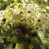 Букет полевых цветов! :: Нина Андронова