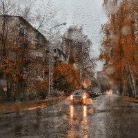 мокрый сезон :: cfysx
