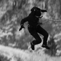 Свобода падения :: Дмитрий Арсеньев
