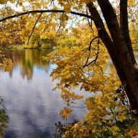 """Цикл """"Осенний пруд"""" 1 :: Viacheslav"""