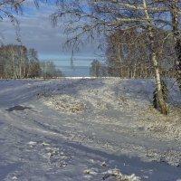 Первый снег 2 :: Сергей Жуков