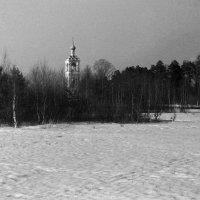 Тающий снег :: Николай Мартынов