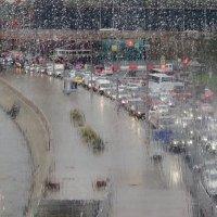 дожди в Москве :: Елена