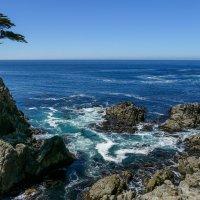 Тихоокеанское побережье Калифорнии :: Юрий Поляков