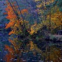 В старом парке вновь колдует осень... :: Ольга Русанова (olg-rusanowa2010)