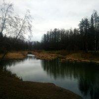 Осенние воды  мрачнеют... :: Елена Павлова (Смолова)