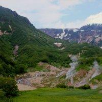 В долине гейзеров :: Дмитрий Солоненко
