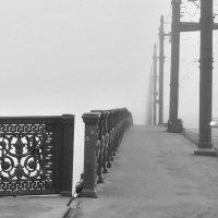 Туман на Литейном мосту :: Елена