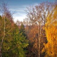 Вид из окна :: Валерий Талашов